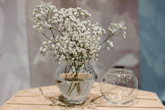 Vase with bunch of Gypsophila Baby's-breath flowers on wooden table Royalty Free Stock Photography