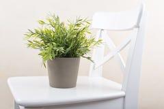 Vase on a chair Stock Photos