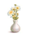 Vase with chamomile flowers Stock Image