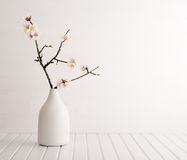 Vase with cherry blossom. On wooden background Stock Images