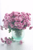 Vase with  chrysanthemums Stock Images
