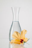 The vase with clean water and hibiskus flower. On a glass table Royalty Free Stock Photos
