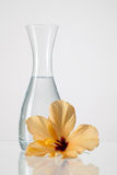The vase with clean water and hibiskus flower. On a glass table Stock Photos