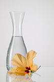 The vase with clean water and hibiskus flower. On a glass table Stock Images