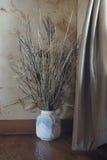 Vase in the corner, interior Stock Photography