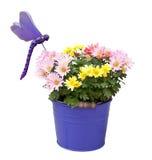 Vase décoratif Images stock