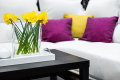 Vase with daffodil flowers in front of white sofa Stock Photos