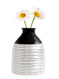 Vase with daisies Royalty Free Stock Photo