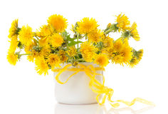 Vase with dandelions Stock Image