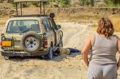 Vase de Land Rover dans Tarangire images stock