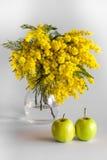 Vase de verre avec des branches d'une mimosa sur un fond blanc et des pommes Photo libre de droits
