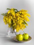 Vase de verre avec des branches d'une mimosa sur un fond blanc et des pommes d'un plat Image stock