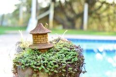 Vase des Geldes und des Bündels im Pool Stockfoto