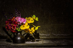 Vase of dried flowers Stock Photography