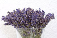 A vase of dried Lavender flowers Stock Photo