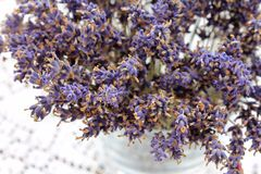 A vase of dried Lavender flowers Stock Image