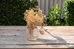 Vase of dry flower. On the table Royalty Free Stock Photos