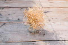 Vase of dry flower. On the table Stock Photography