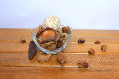 Vase with dry fruits. Dry the acorns, fruit and flowers in a vase for interior Stock Images