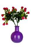 Vase en céramique Photographie stock libre de droits