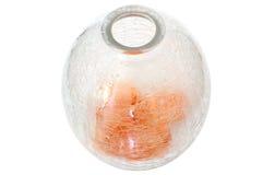 vase en verre à pétales de fleurs criquées Photographie stock