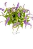 Vase en verre avec des fleurs de lilas d'été image libre de droits