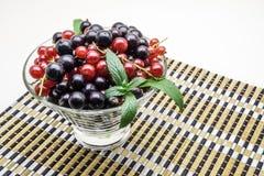 Vase en verre avec la groseille noire et rouge sur le bambou Images stock