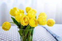 Vase en verre clair contenant les tulipes jaunes coupées et le verre clair Photographie stock libre de droits