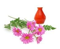 Vase et camomille rose Photo libre de droits