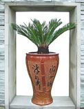 vase för cycadporslinsago Fotografering för Bildbyråer