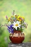 Vase fabriqué à la main avec des fleurs de forêt Image libre de droits