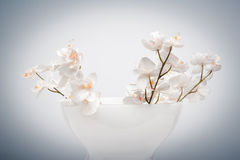 Vase of false flowers Stock Image