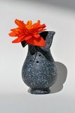 Vase with flower Stock Photography
