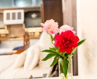 Vase of  flower in colorful interior Royalty Free Stock Photo
