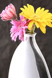 Vase with flowers. Modern Vase with daisy flowers Royalty Free Stock Image