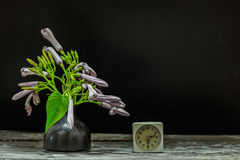 Vase of flowers clock Royalty Free Stock Images