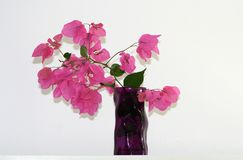 Vase with flowers in front of a wall stock photography