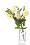 Vase of flowers isolated on white Royalty Free Stock Images