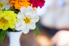 Vase with flowers. Royalty Free Stock Photo