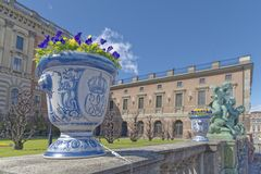 Vase with flowers, stockholm Royalty Free Stock Image