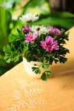 Vase of flowers Royalty Free Stock Photos