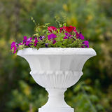 vase in the garden with summer blooming flowers Stock Photo