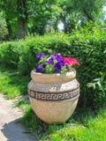 Vase grec avec des fleurs en parc Photos stock