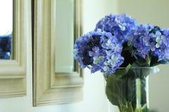 vase hydrangeas Στοκ Εικόνες