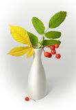 Vase with leaves Stock Image