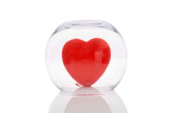 Vase with Love Heart Stock Photography