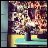 Vase mit Blumen Lizenzfreies Stockfoto