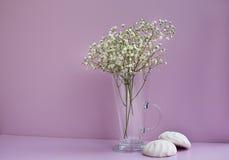 Vase mit Blumen und zwei weißen Zefir Lizenzfreie Stockfotografie
