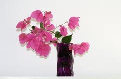 Vase mit Blumen vor einer Wand stockfotografie