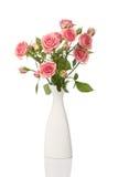 Vase mit den Rosen getrennt auf Weiß stockfoto